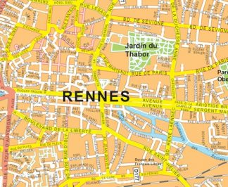 Rennes vector map