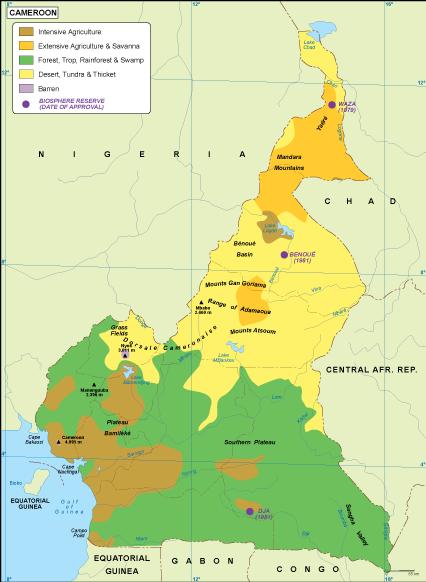 Cameroon vegetation map on côte d'ivoire map, estonia map, grenada map, monaco map, gambia map, saudi arabia map, rwanda map, madagascar map, ghana map, egypt map, mali map, sudan map, namibia map, croatia map, tunisia map, congo map, algeria map, thailand map, kenya map, angola map, liberia map, cape verde map, morocco map, gabon map, uganda map, africa map, libya map, nigeria map, senegal map, malawi map, ecuador map, comoros map, niger map, ethiopia map, mozambique map, zimbabwe map,