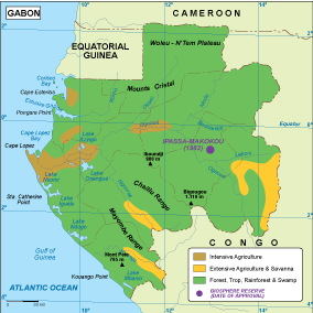 Gabon vegetation map