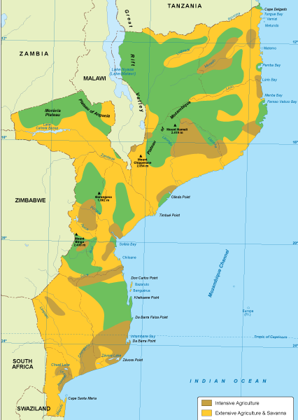 Mozambique vegetation map