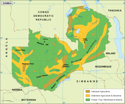 Zambia vegetation map. EPS Illustrator Map | Vector World Maps