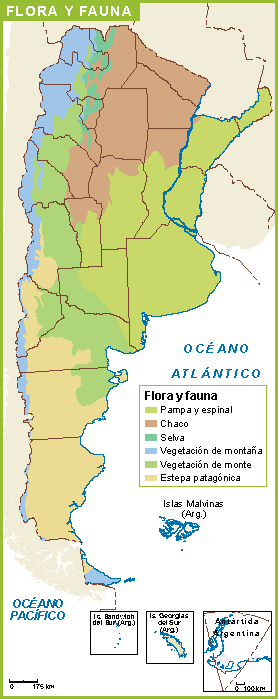 Argentina Mapa Flora Fauna Our Cartographers Have Made Argentina - Argentina map download