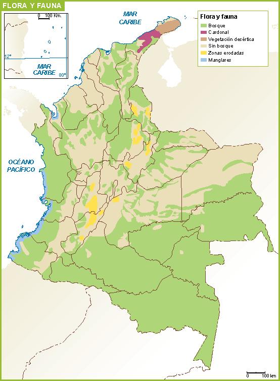 Colombia mapa flora fauna | Vector World Maps