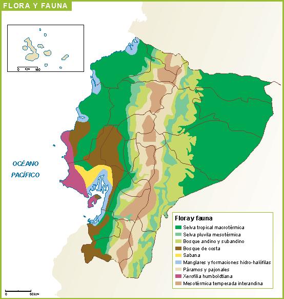 Ecuador mapa flora fauna