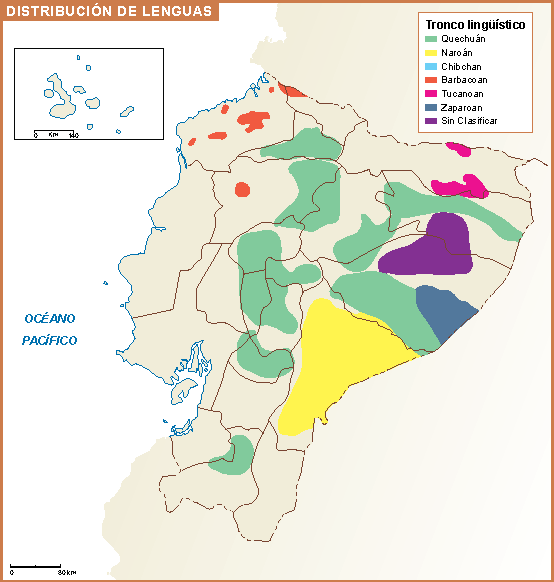 Ecuador Mapa Lenguas Vector World Maps