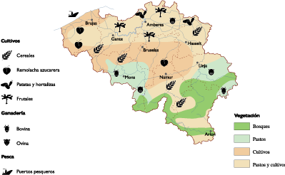 Belgium maps | Vector & Wall Maps from Netmaps®. Made in ... on land use maps usa, land use map germany, land use map england, land use map greece, land use map mexico, land use map france, land use map europe, landmark of spain, table of contents of spain, housing of spain,