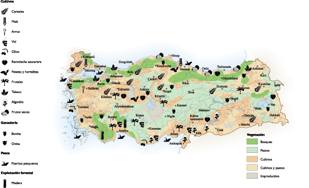 Turkey Land Use map | Vector World Maps